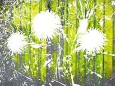 MoArt FlowerPower Fantasy 3a