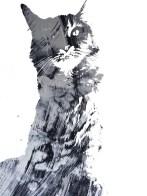 MoArt Urban Cats - Diva 8