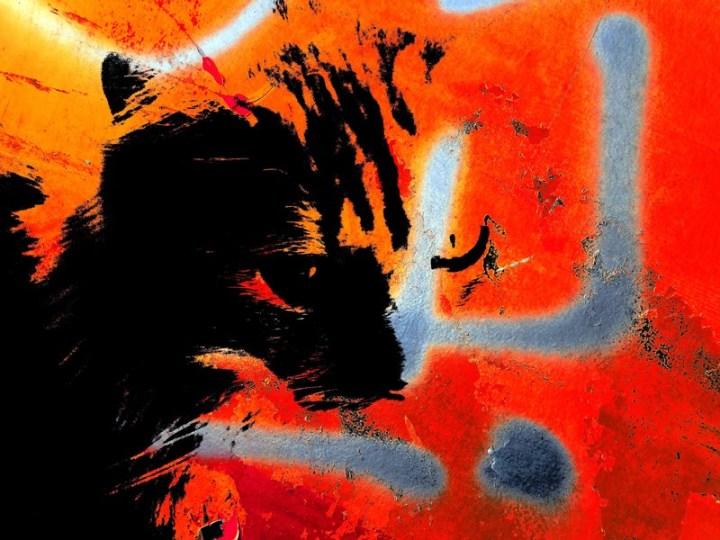 MoArt Kattenkunst Odin 3