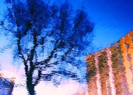 MoArt Urban Reflections 54