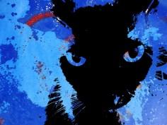 MoArt Urban Cats - Storm 5