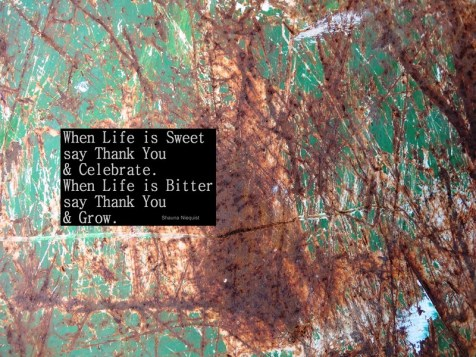 MoArt and Shauna Niequist - When Life Is Sweet Say...