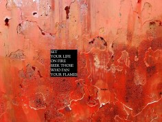 MoArt and Rumi - Set Your Life On Fire...