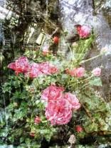 MoArt FlowerPower Fantasy 2