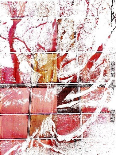 MoArt Tree Magic 20 RED