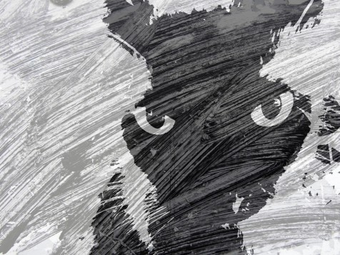 MoArt Urban Cats - Storm 1