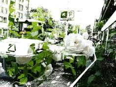 MoArt FlowerPower Fantasy 13