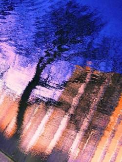 MoArt Urban Reflections 59