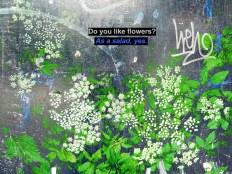 MoArt Small Talk - Do You Like Flowers
