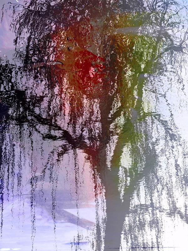 MoArt Tree Magic 91 voor FB