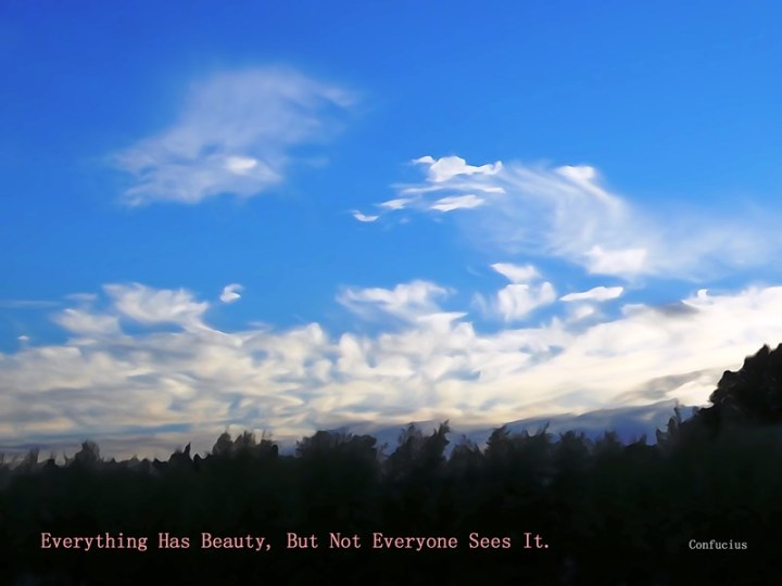 MoArt and Confucius - Everything Has Beauty But...