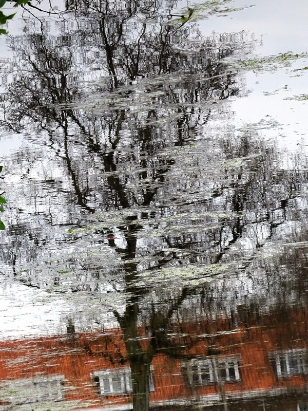 MoArt Urban Reflections 91