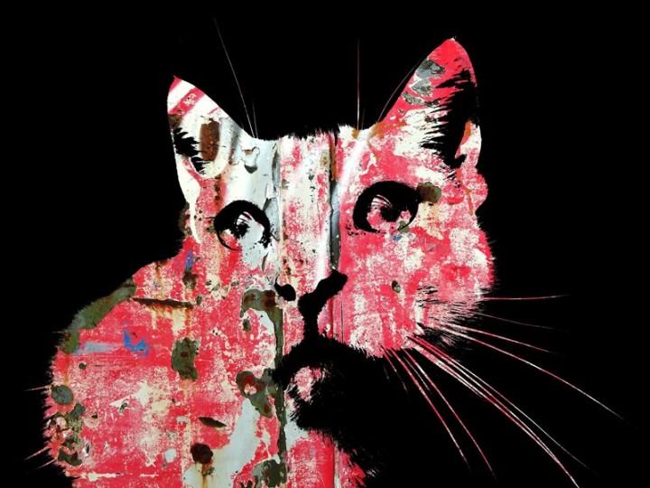 MoArt Cat Art - Indy 4