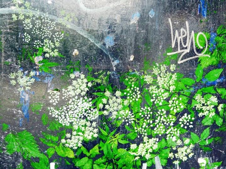 FlowerPower Fantasy 034