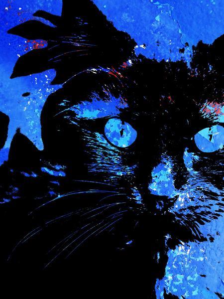 MoArt Kattenkunst - Storm 3