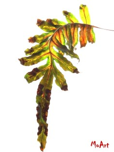 moart dancing leaves 3 voor fb