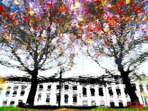 MoArt Autumn Trees 1 small