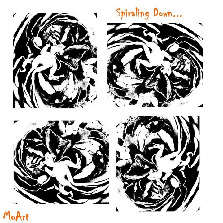 MoArt Spiraling Down - Experiments in BlackandWhite